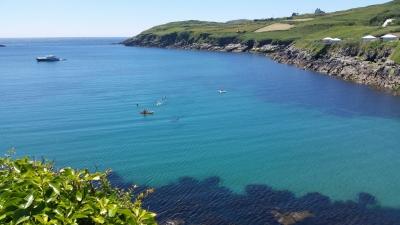 Fastnet Tours kayak basking shark